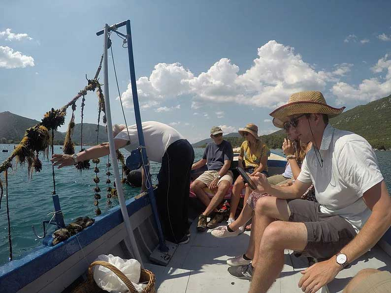 oyster tasting mali ston peljesac peninsula dubrovnik croatia