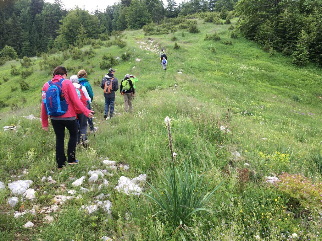 Hiking through Slovenia